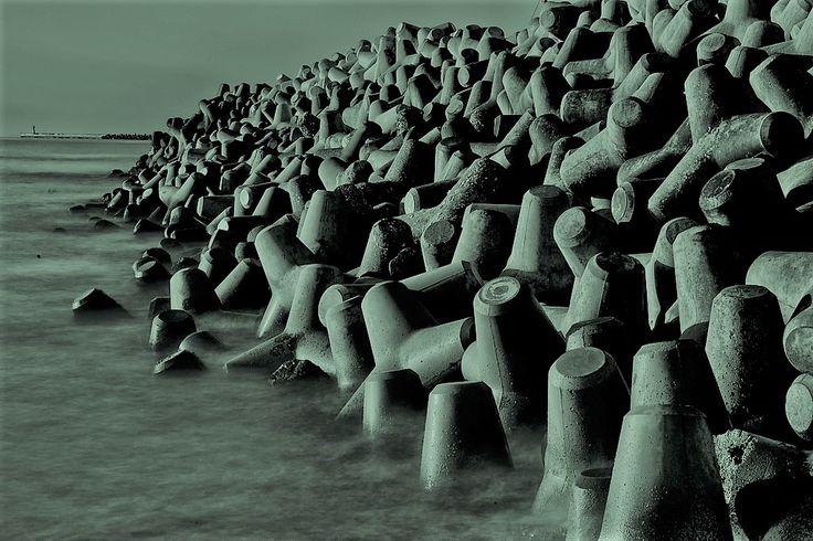 Ý tưởng biến trụ chắn sóng ven biển thành rừng...   Mạng Thủy sản Việt Nam