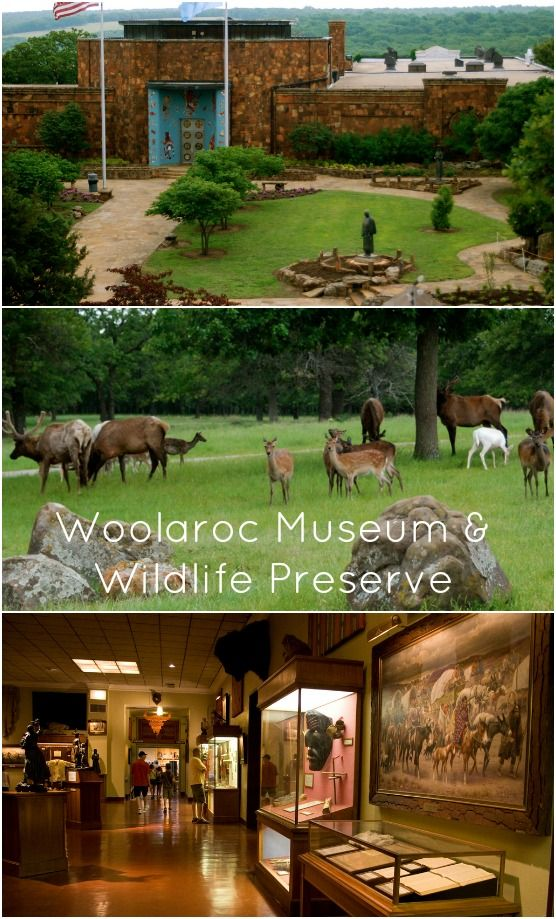 W is for the Woolaroc Museum & Wildlife Preserve! One of Bartlesville's most popular attractions, Woolaroc was once a work ranch but now houses an incredible collection of Western and Native American art. It is also home to bison, longhorn cattle, elk, llamas, deer and more.