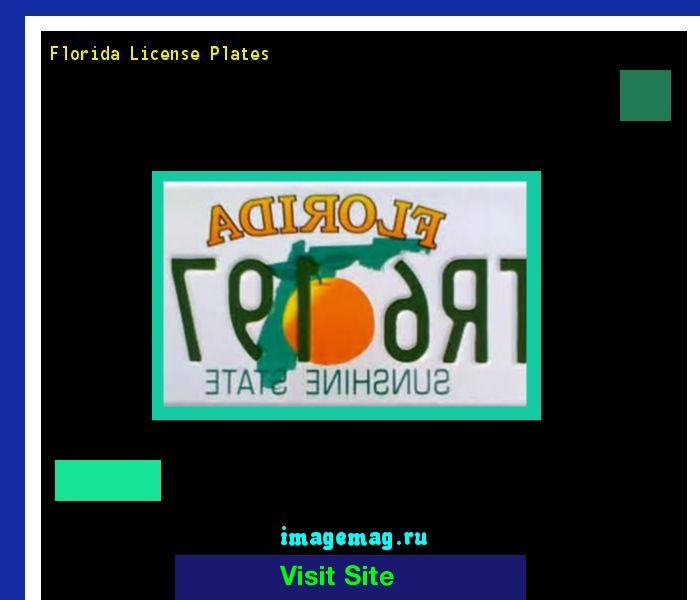 Florida license plates 145425 - The Best Image Search