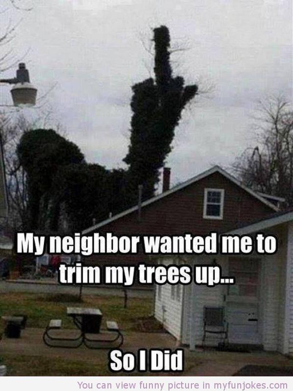 Hahahaha!! Win! -My neighbor wanted me to trim my trees