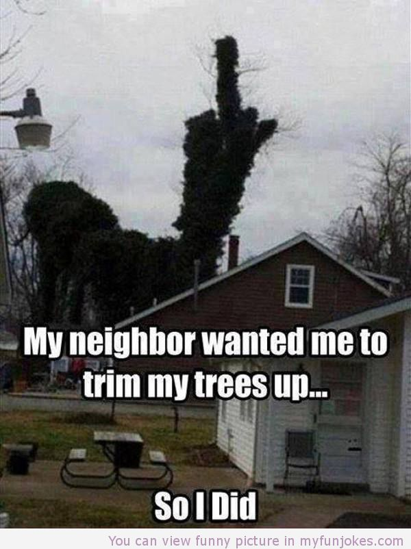 Hahahaha!! Win! -My neighbor wanted me to trim my trees