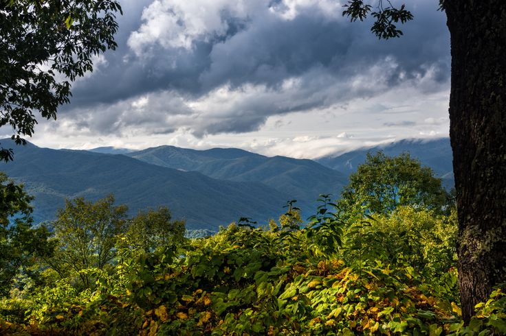 68 Best Spring Time In The Smokies Images On Pinterest