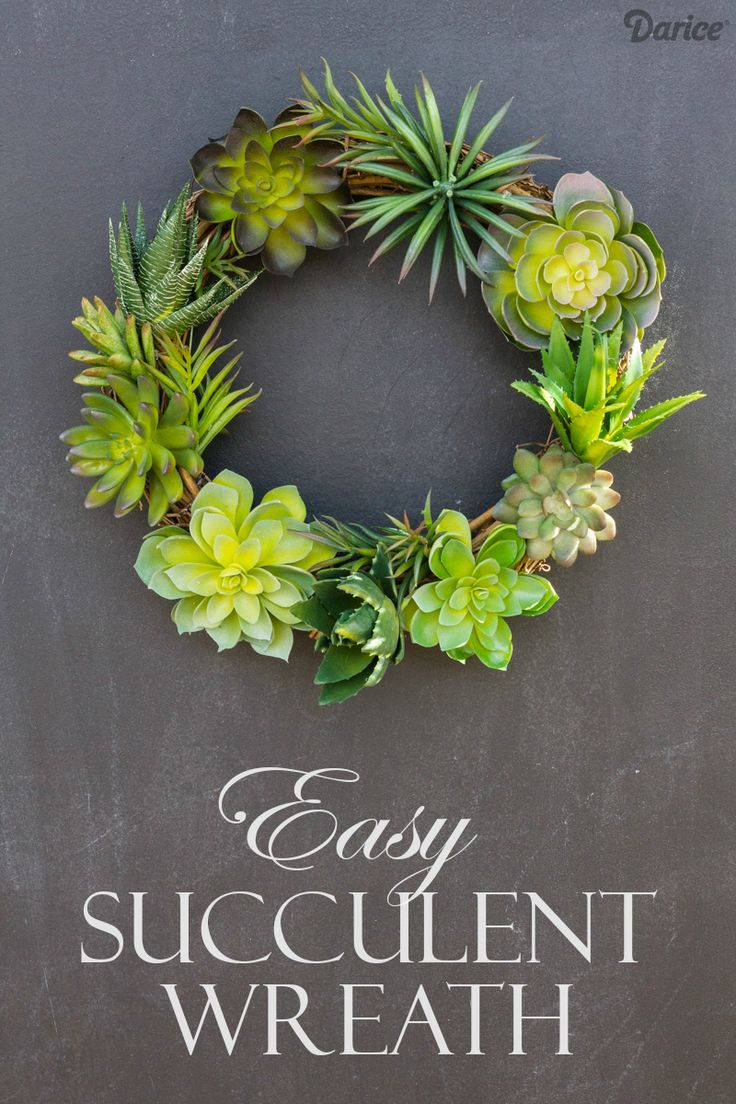 Diy Succulent Wreath Easy Tutorial Darice The