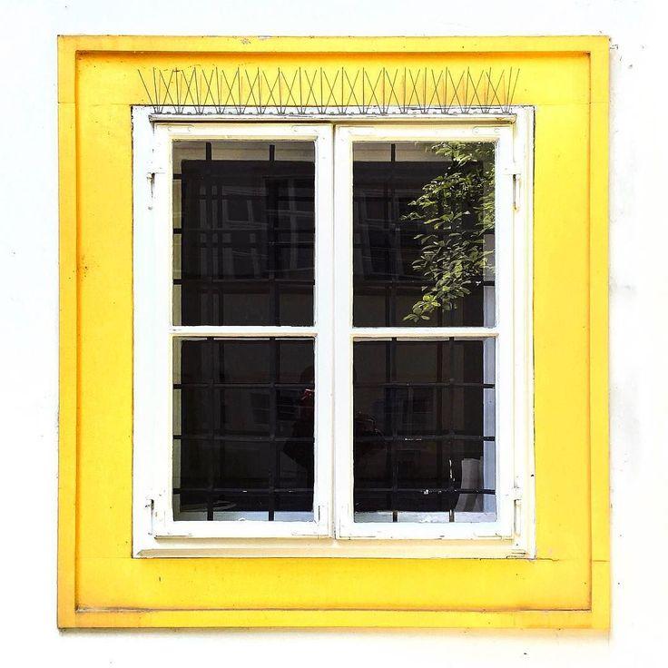 An #Ayellowmark window from #Vienna