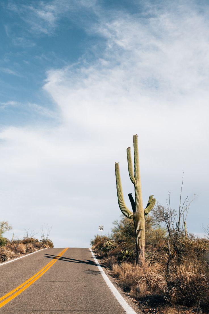 wanderlust | open desert roads