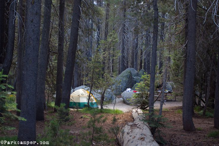 my unforgettable experience at yosemite national park Lasting adventures: an unforgettable experience - see 592 traveler reviews, 352 candid photos, and great deals for yosemite national park, ca, at tripadvisor.