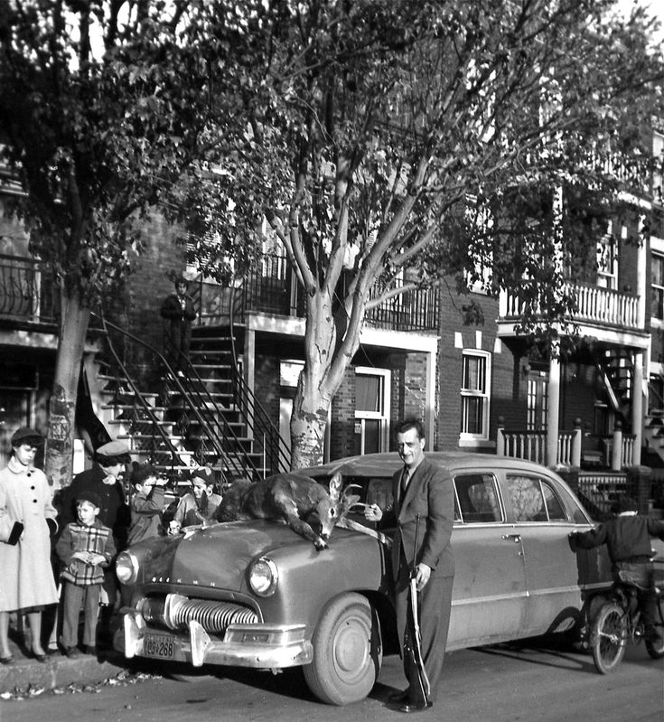 """Typical Montreal scene in the 1950's except for the deer. Those houses with their staircases represent well that neighbourhood called ""La Petite Patrie."" Houses were built in the 1920's. The little fellow on the bicycle is my uncle. I guess the Mercury Meteor is from 1950."""