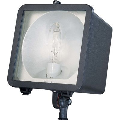 Best 25 Light Bulb Types Ideas On Pinterest Types Of Lighting Bulb And Light Bulb