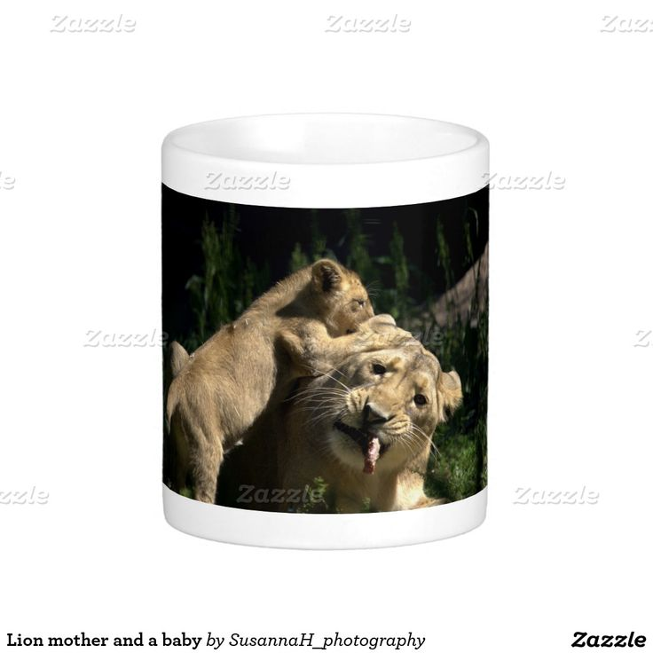 Lion mother and a baby classic white coffee mug