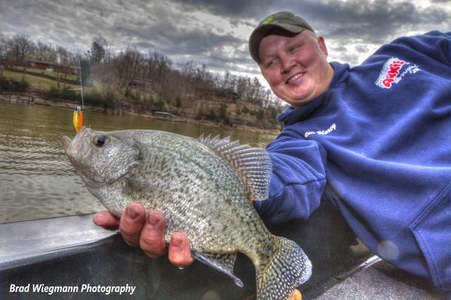 how to catch crappie with minnows