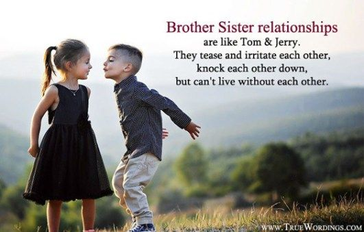 The 100 Greatest Brother Quotes And Sibling Sayings Quotes I Love
