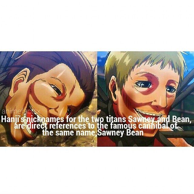Anime: Shingeki no Kyojin (Attack on Titans) Characters: Sawney, Bean, and Hanji