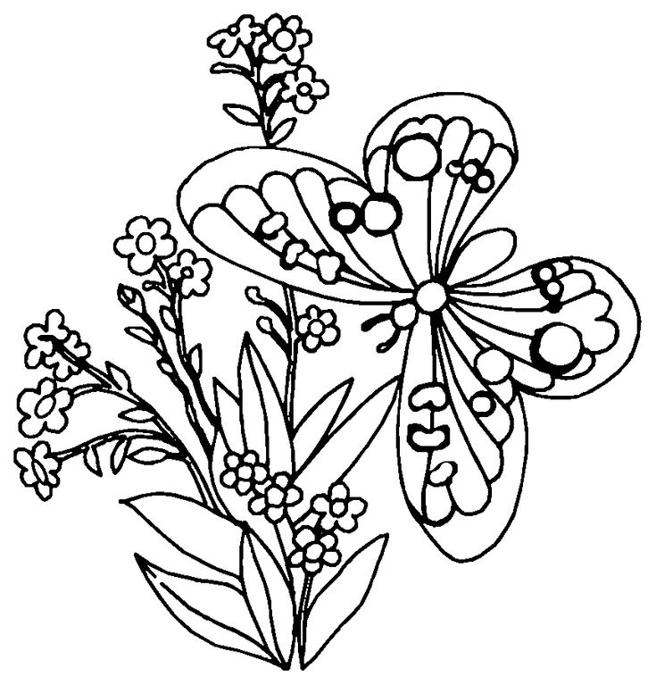 coloriage a imprimer papillon