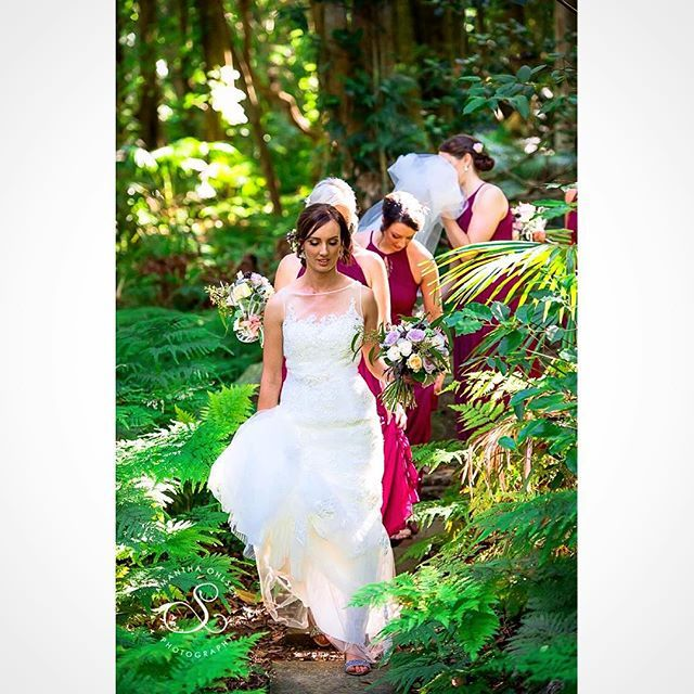 I love a #rainforestwedding, particularly when you get such #beautiful light. #mountkiera near #Wollongong makes for a #magical setting for a #dreamwedding. #samanthaohlsenphotography #wollongongwedding #mountkierascoutcamp