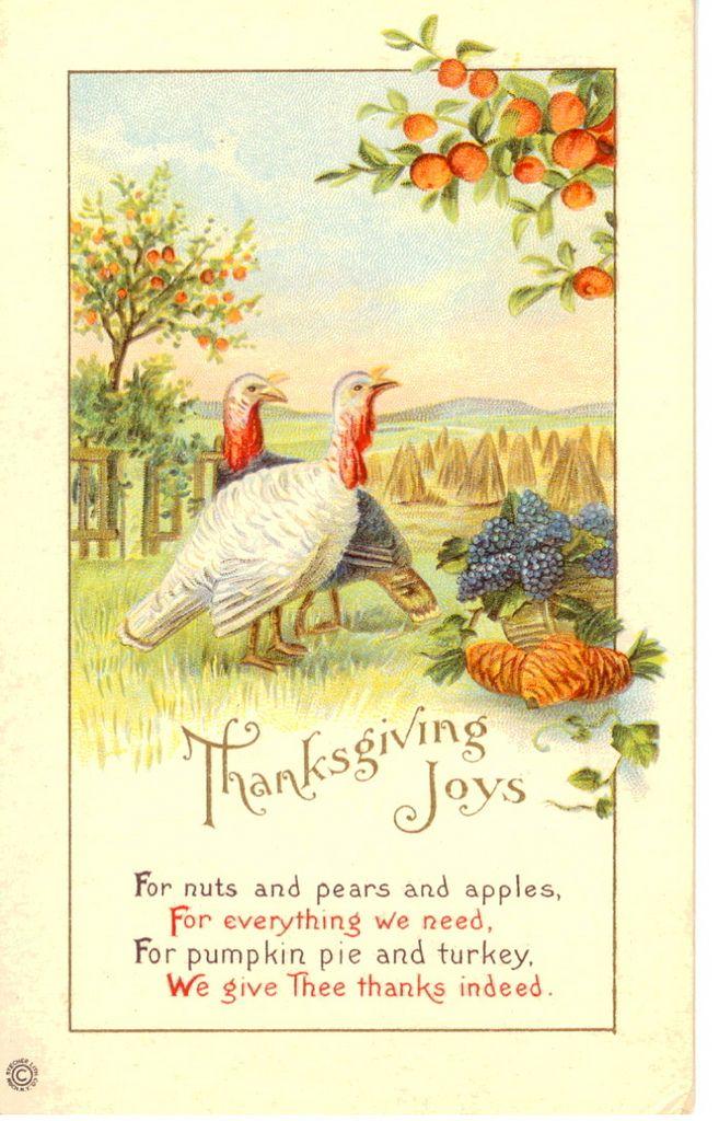 171 Best Vintage Illustrations Thanksgiving Images On Pinterest