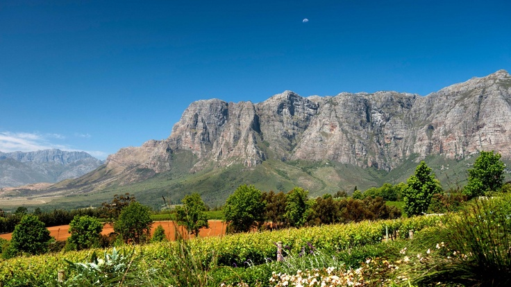 Gardens and Vineyards at Delaire Graff Wine Estate in Stellenboch, South Africa