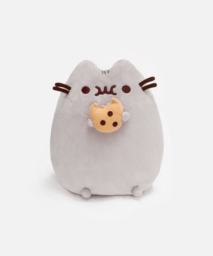Cookie Pusheen plush toy  Get this for Angel