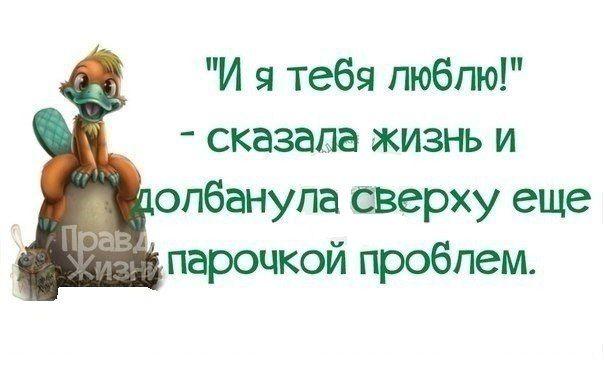 oFbAVoC0mTw.jpg (604×367)