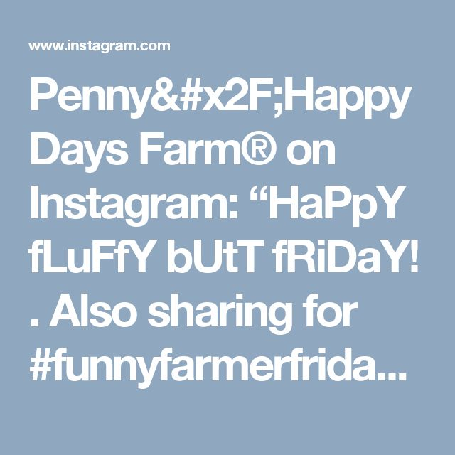 "Penny/Happy Days Farm® on Instagram: ""HaPpY fLuFfY bUtT fRiDaY! . Also sharing for #funnyfarmerfriday, hosted by Chrissy,  @finally_a_farmgirl. . . #farmchicfriday…"""