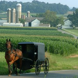 Lancaster, Pennsylvania...farm country, and so pretty....one of my favorite places to visit. Amazing how difficult society makes it for those that desire to live a simple lifestyle....technology is good, but I think their choice is sometimes wiser.