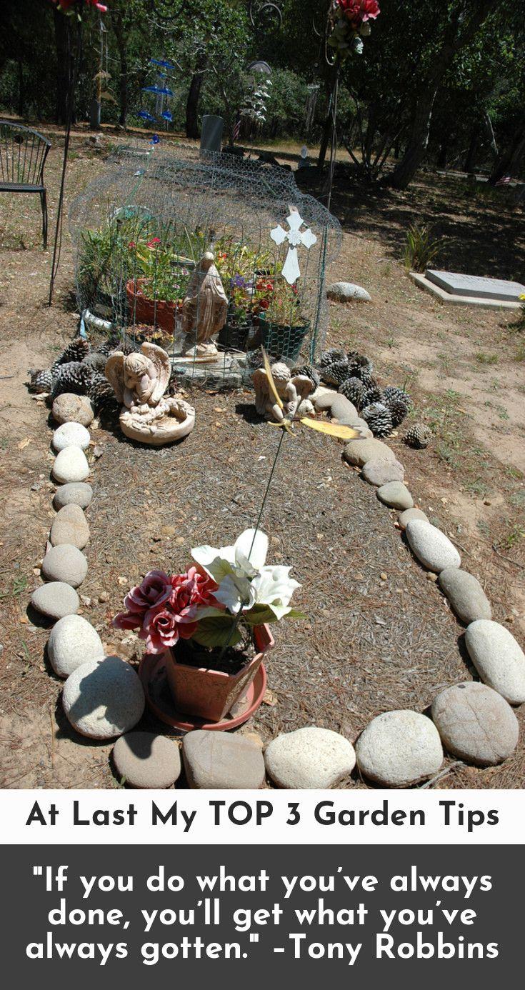Home vegetable garden design  Home vegetable garden designs At Last My TOP  Garden Tips  Home