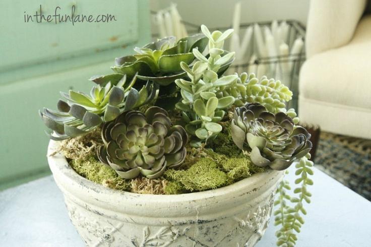 18 best faux succulents images on pinterest faux succulents succulents and succulents garden. Black Bedroom Furniture Sets. Home Design Ideas