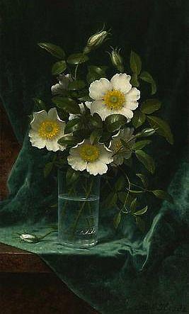 Martin Johnson Heade, Cherokee Roses. 1883-95