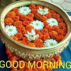 Whatsapp Good Morning Images, Whatsapp Good Morning Photos, Whatsapp Good Morning Pics, Whatsapp Good Morning Pictures, Images for Whatsapp...