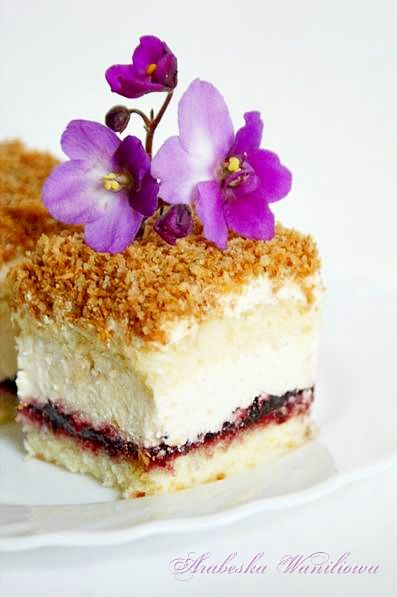 Łabędzi Puch, Poland | sponge cake, bread crumbs and coconut cream, black currant jam and roasted coconut shreds