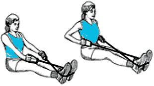 exercice avec elastique pour les muscles du dos
