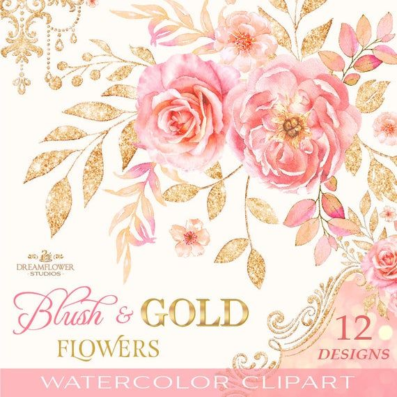 Blush Flower Clipart Watercolor Rose Clipart Pink And Gold Etsy Flower Clipart Rose Clipart Digital Flowers