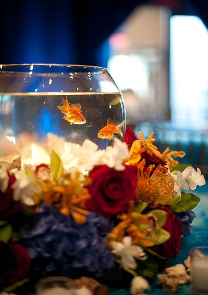 Best fish bowl centerpieces ideas on pinterest water