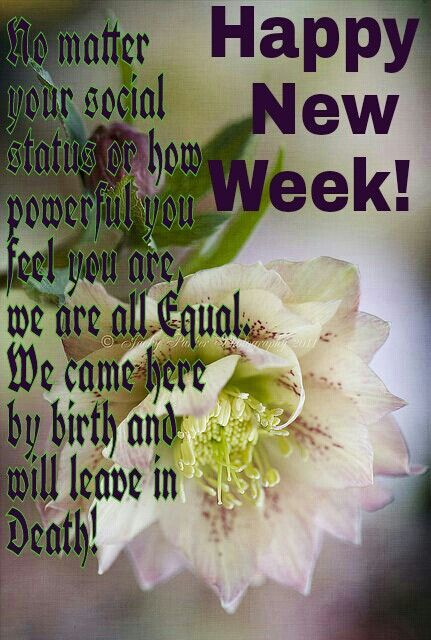 42 best images about Weekly Blessings on Pinterest ...  Weekly Blessings