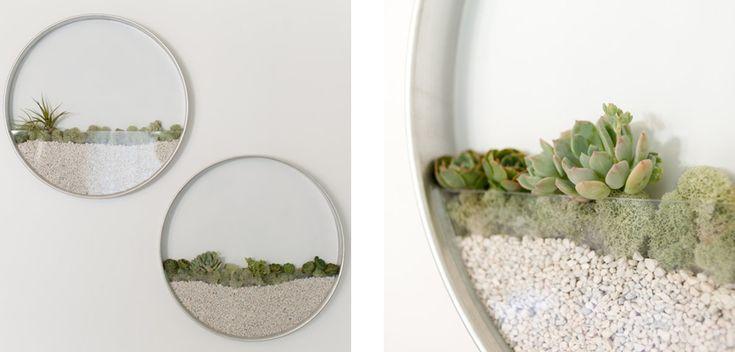 I giardini da parete di Kim Fisher - URBAN CONTEST ® MAGAZINE