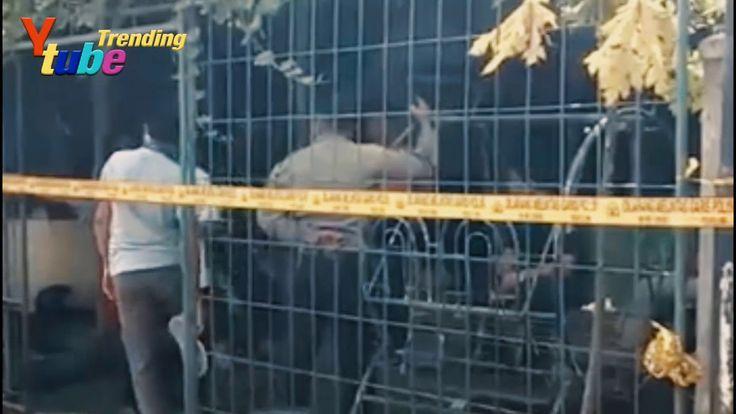 Polisi sudah deteksi pergerakan kelompok teroris di wilayah Sumut