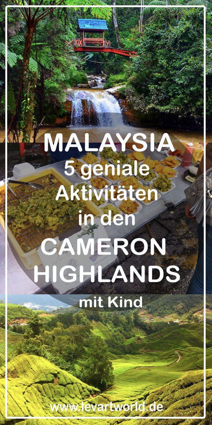 Malaysia 5 Geniale Aktivitaten In Den Cameron Highlands Mit Kind Aktivitaten Cameron Den Geniale Highlands Malaysia Reise Malaysia Reisen Mit Kindern