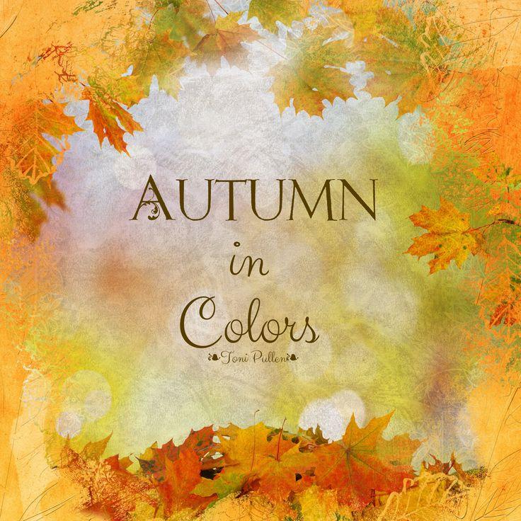 Autumn In Colors🍁