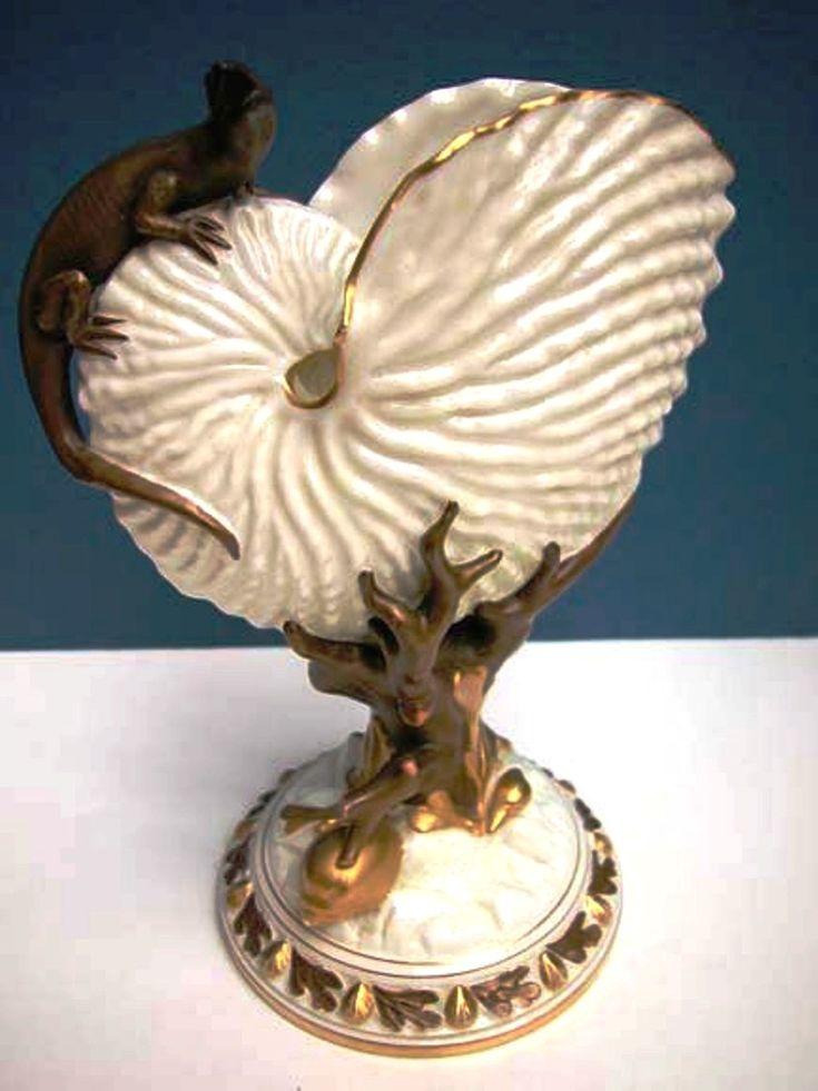 Nautilus Shell                                                                                                                                                                                 More