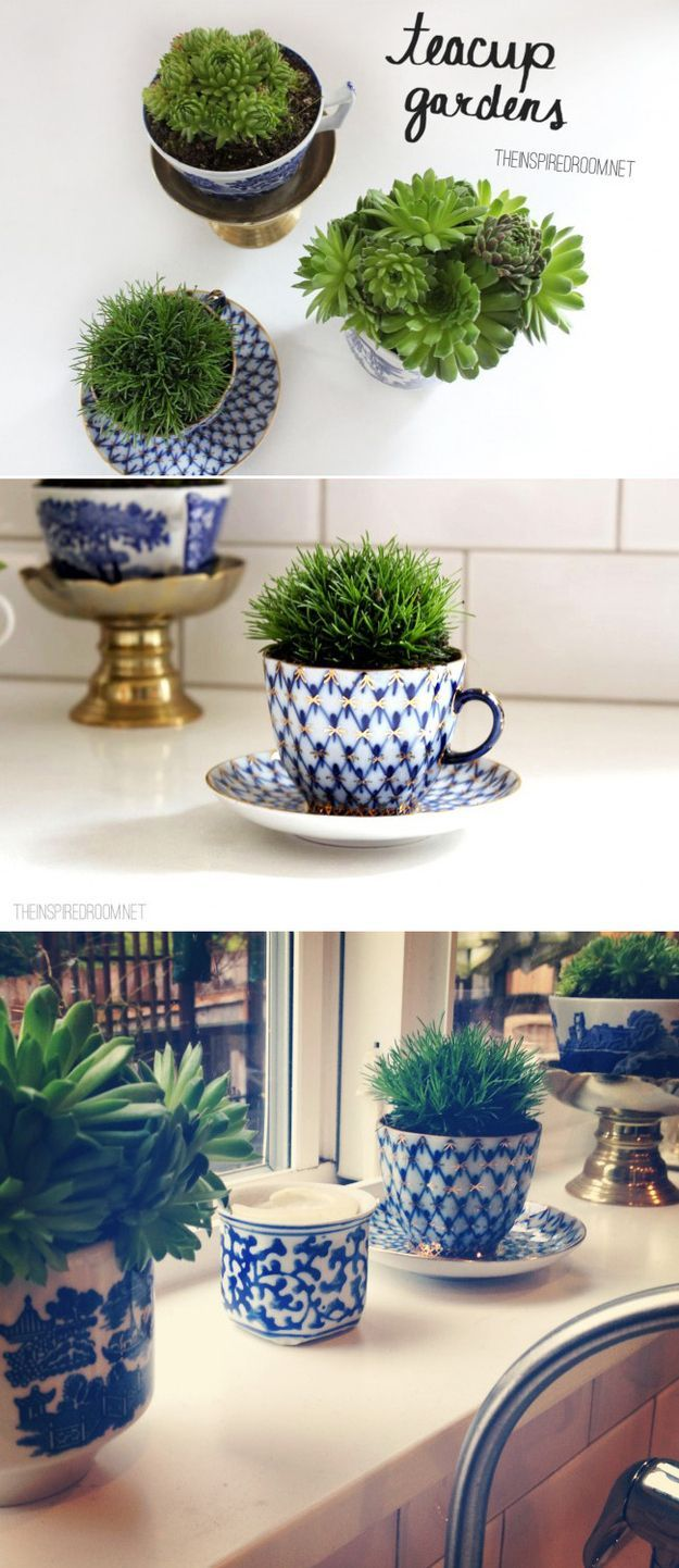 Teacup Garden Reuse: take thrifted or antique teacups and saucers to create fun Window still sized herb gardens. Great gifts too!