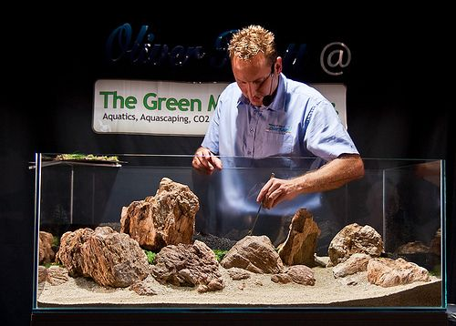 Oliver Knott Aquascaping Demo Day