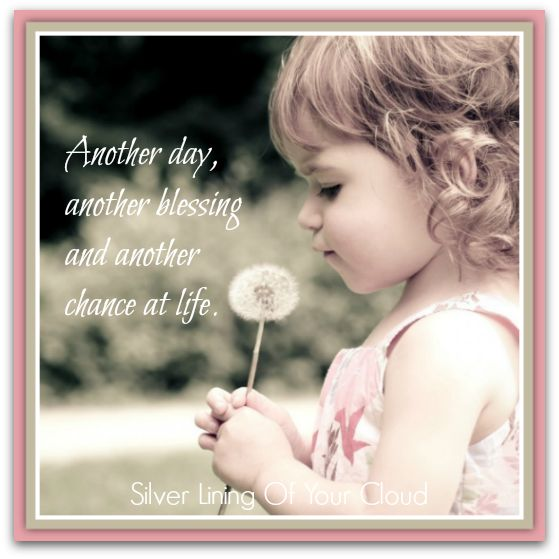 Another Day Of Life Quotes: 17 Best Images About Life Quotes And Sayings On Pinterest