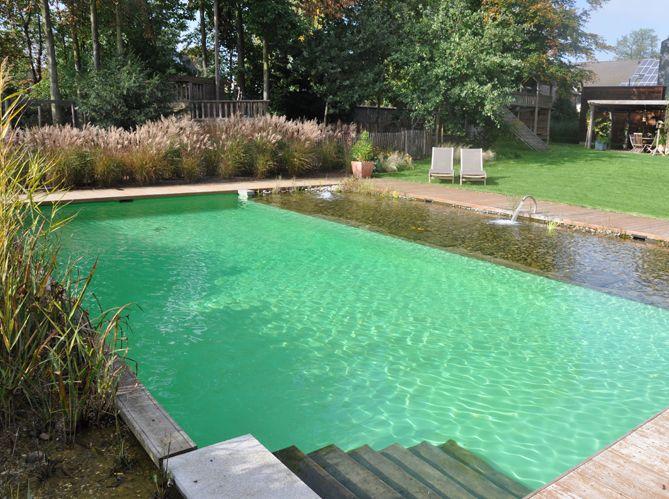 Qui n'a jamais rêvé de plonger dans une eau pure à 100%? L'étang de baignade, appelé plus...