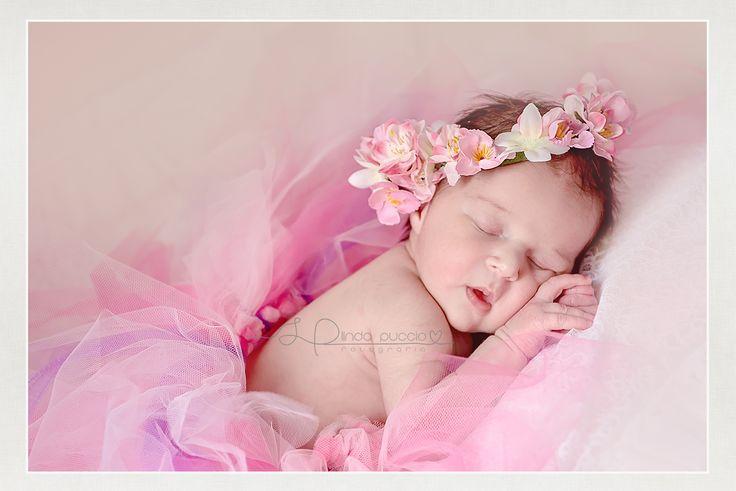 http://www.lindapuccio.it/images/gallerie/kids_babies/AA-NEWBORN01.jpg #newborn #kids #photography #lindapuccio #portrait #baby