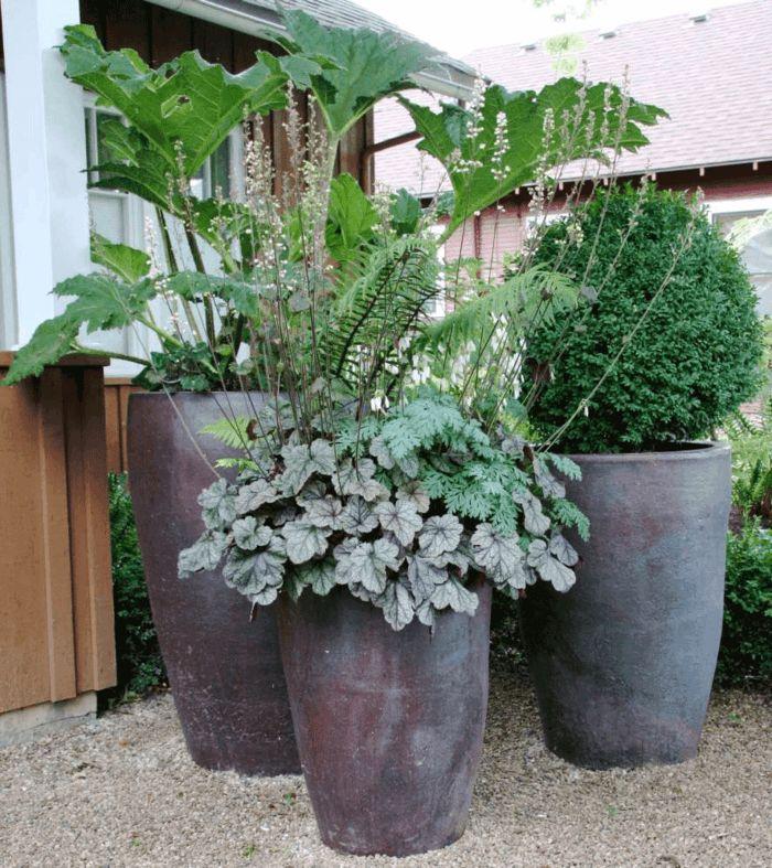 Erstaunlich 64 besten Gartengestaltung Bilder auf Pinterest | Garten, Bambus  DC65