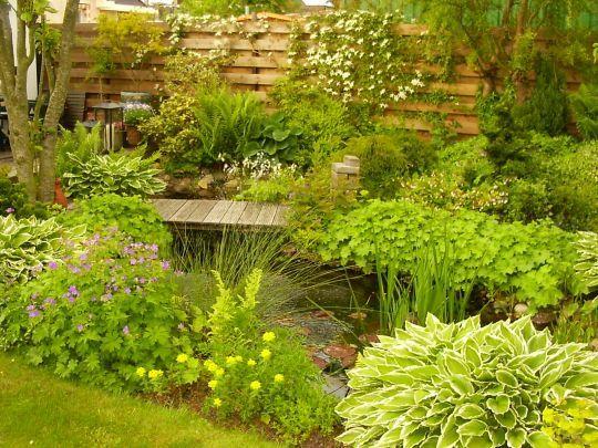 Fietsen, wandelen en prachtige tuinen tijdens Wieringer tuinronde