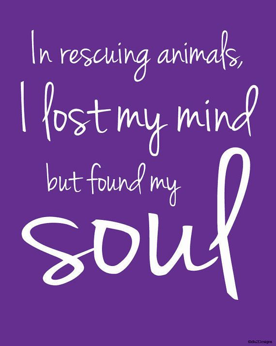 In rescuing animals ... I found my soul  8x10 by dlu2Designs, $5.00