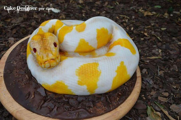 Cake Designer per caso [Snake Cake]