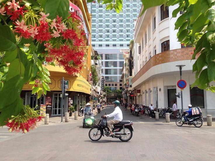 ベストショットが撮れました ベトナムホーチミンに居た時のワンシーン  バイクの量もこんなにスキスキとは言わないまでも  半分くらい...いや4分の1 にはならないとなあ...  まあそういうのも時間の経過と共に変わっていくと思いますが...  とはいえ日本のバイク企業もこのバイク社会に恩恵をたくさん頂いて  間接的に僕もベトナムのバイク社会の恩恵の恩恵を受けているわけですが...  そう思うと旅行の先々の出来事も人ごとではないという見方が出来そうです  ならば   この目の前の状況がちょっとでもほんのちょっとでも良くなるにはどうしたらいんだろう...  と自問してみると 何か に出会えるかもしれません  例えベトナムの実情を変える実業家のような行動ができなかったとしても  この考える習慣が今の家庭環境をよりよくするヒントを生み出すきっかけに繋がることはあります  とりあえずは何か解決した方が良い事に出会ったら  この好きな言葉を口ぐせにしていきたいと思っています  どうしたもんじゃろうのう  Taiwa Sato  #taiwa #sato #cocoacana #ここあかな…