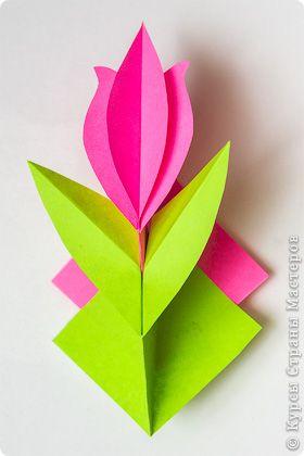 Virágok nyílnak ... a Vörös téren! Felkérem az MC a művészeti 3-D Stick Art.   Ország Masters