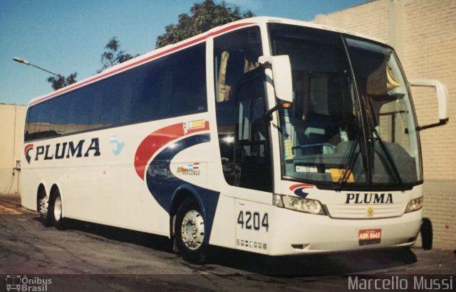 Pluma Conforto e Turismo 4204 por Marcello Mussi